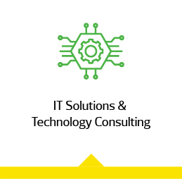 IT Solutions & Technology Consulting