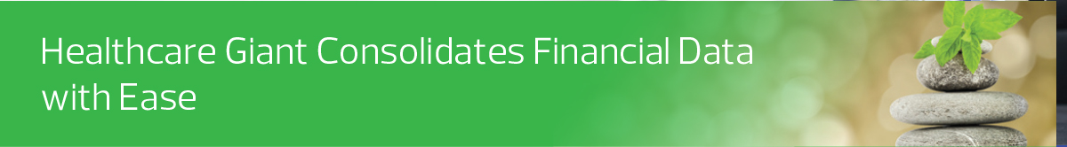 Healthcare_Healthcare Giant Consolidates Financial Data with Ease_GL conso module and utility