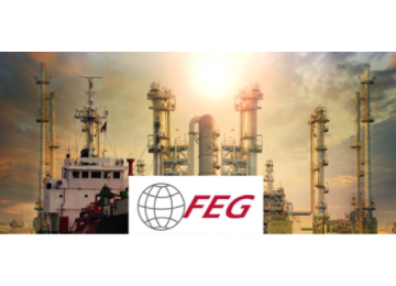 Falcon Energy Group Limited-