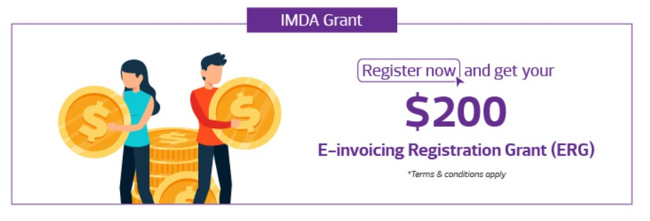 e invoicing registration grant