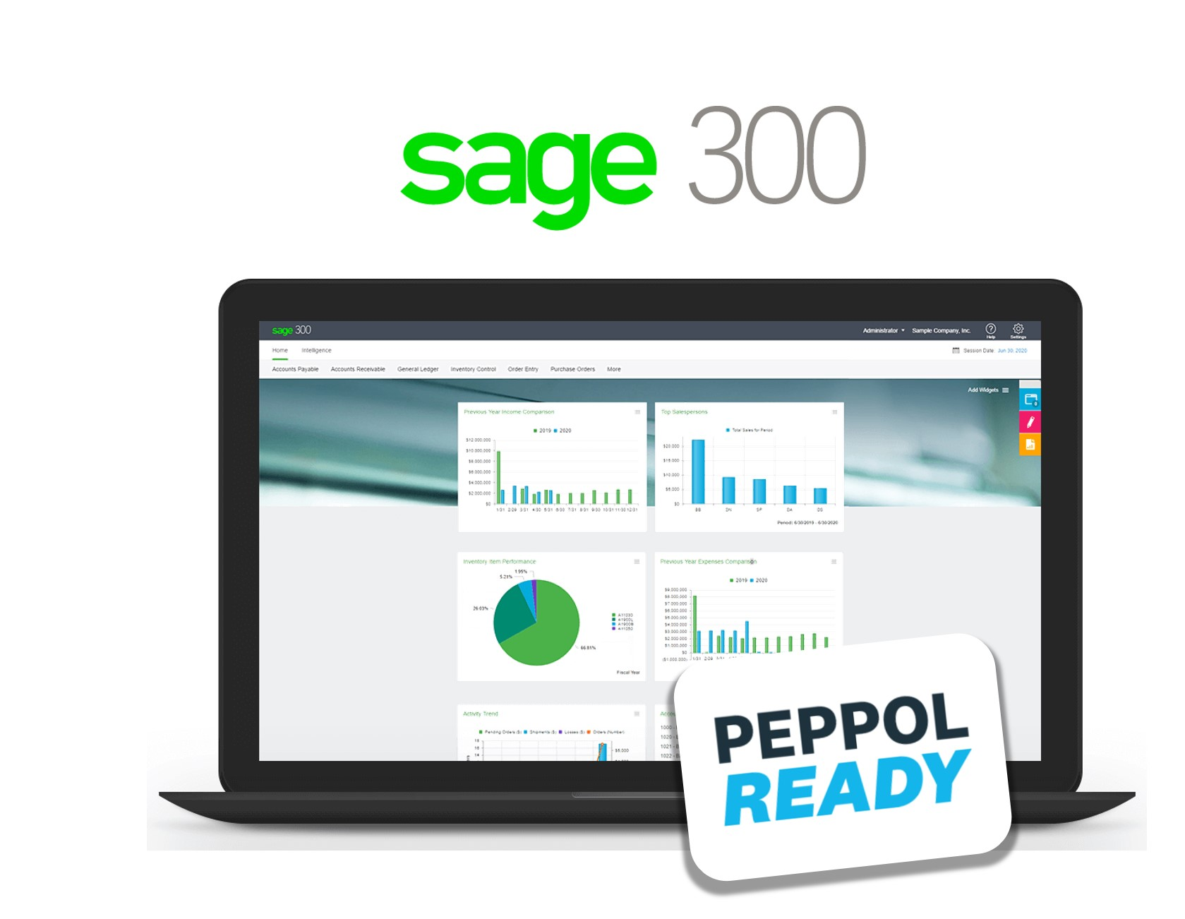 Sage 300_web interface